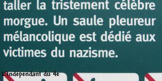 Lindependantdu4e_ile_de_la_cite_saule_pleureur_IMG_7821