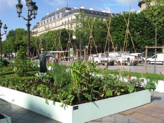 Lindependantdue4e_jardins_partages_IMG_6578