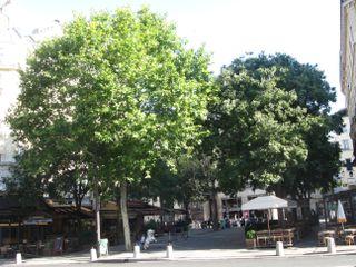 Lindependantdu4e_bourg_tibourg_IMG_2687_ter