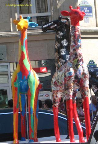 Lindependantdu4e_girafe_01_IMG_6753