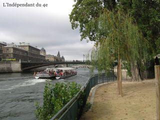 Lindependantdu4e_saule_pleureur_IMG_3870