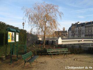 Lindependantdu4e_saule_pleureur_IMG_4406