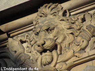 Lindependantdu4e_lions_bhv_IMG_1799