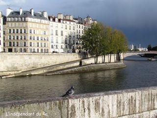 Lindependantdu4e_pigeons_IMG_2805_bis