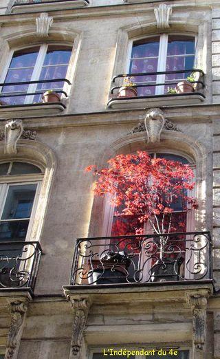 Lindependantdu4e_rue_des_lomabrds_17_IMG_1345