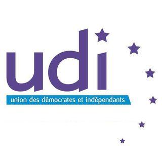 UDI-Logo-CE