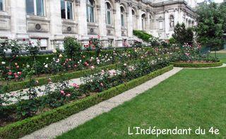 Lindependantdu4e_jardin_nueve_IMG_1693